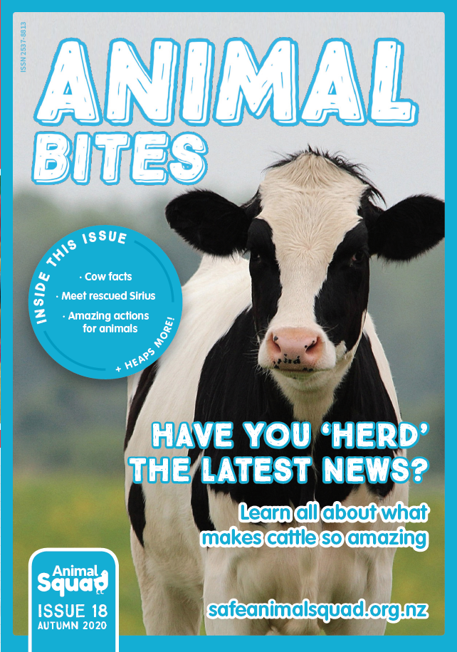 Have your 'herd' the news on cows?