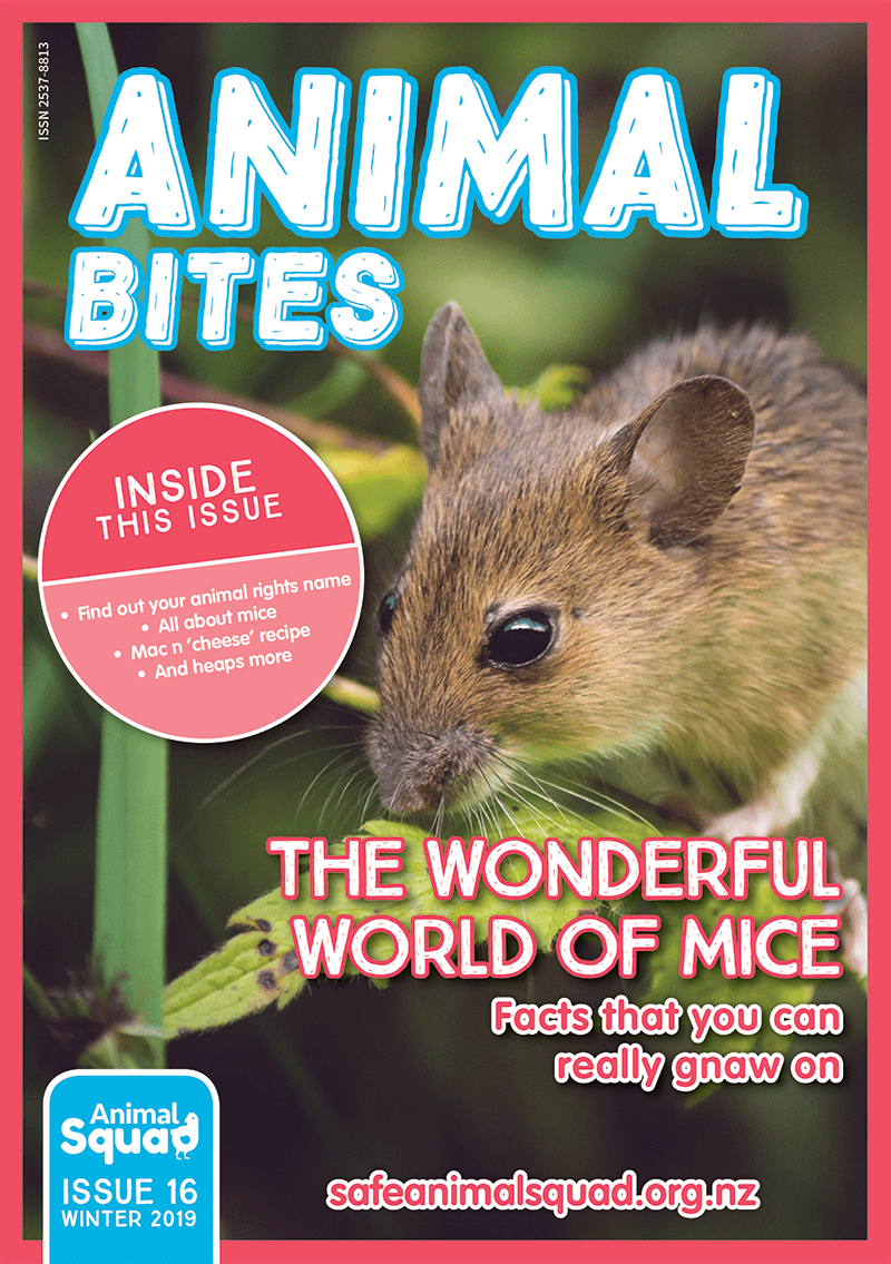 The Wonderful World of Mice