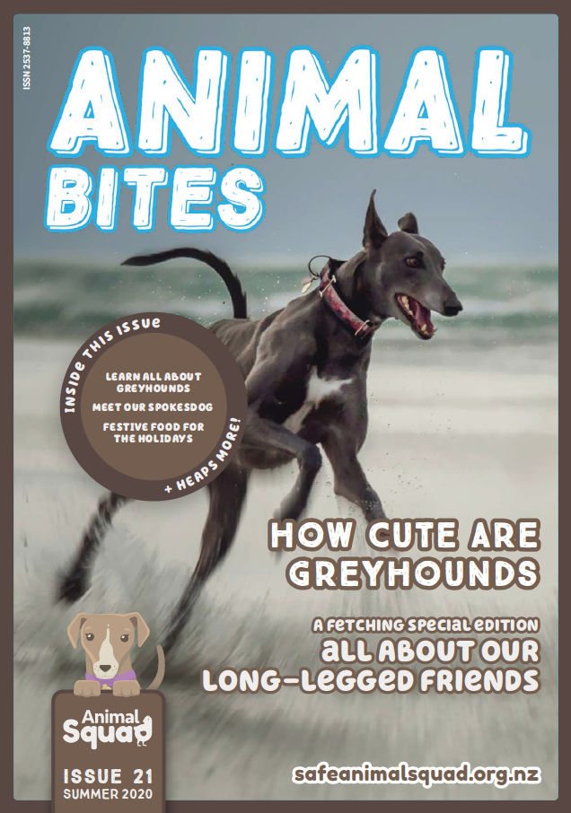 How cute are greyhounds