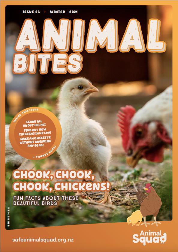 Chook, Chook, Chook, Chickens!